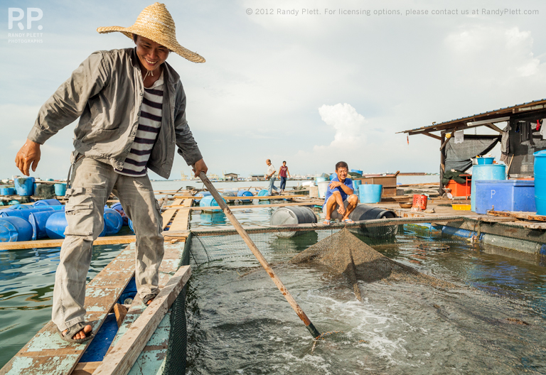 South East Asian Fish Farm